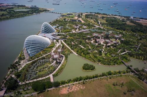 Gardens by the Bay văzute de pe Marina Bay