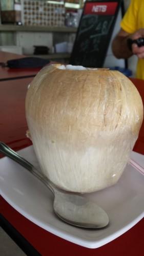 Nelipsita nucă de cocos