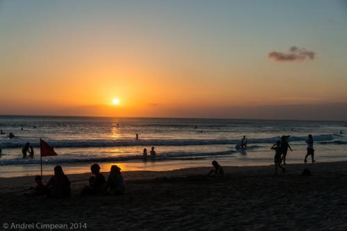 Apus Bali