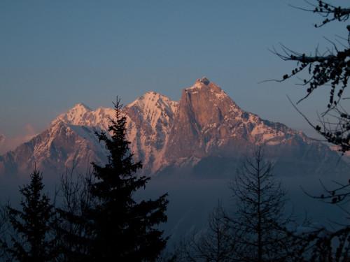 Apus peste Alpi