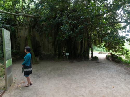 În fundal, ruinele vechii capele