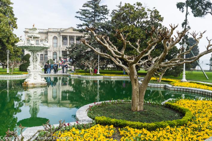 În fundal, Palatul Dolmabahce