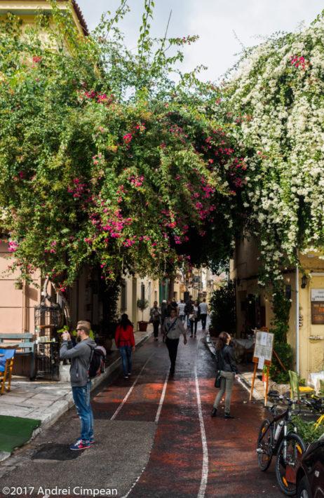 Noiembrie în Atena