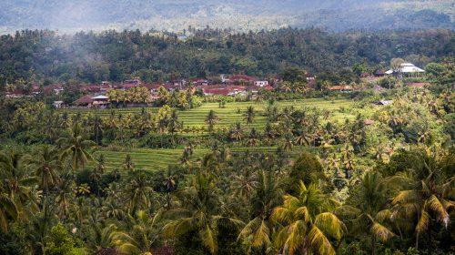 Mayong- partea 1